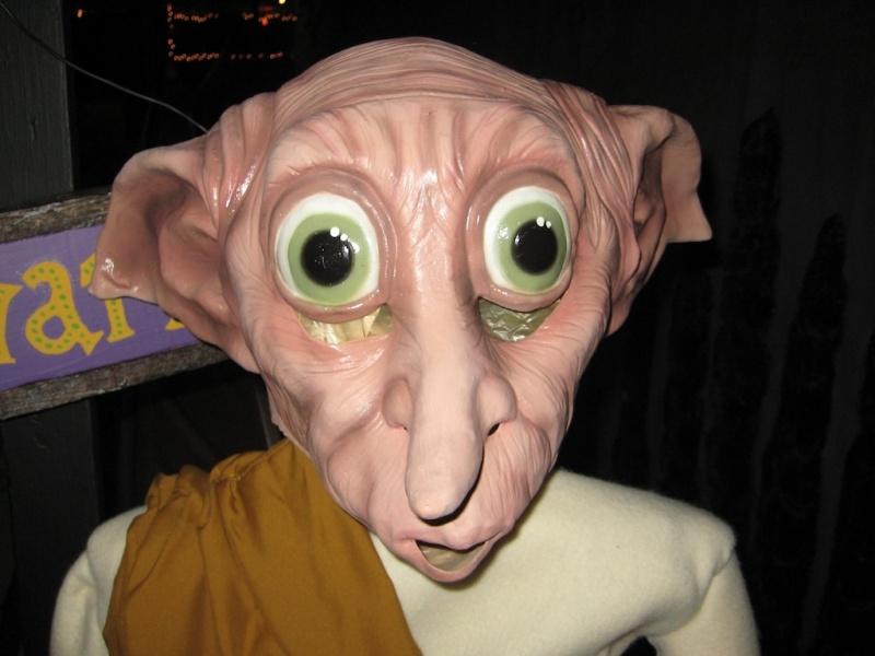 2009 Harry Potter