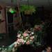 DSC_9353 thumbnail
